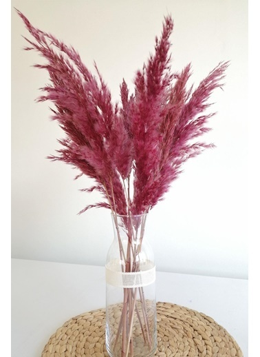 Kuru Çiçek Deposu Kuru Çiçek Pampas Küçük 7'li Demet 50 Cm (Pembe) Pembe